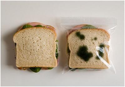 Пакет для сохранения завтрака