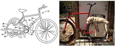 Велосипед, чтобы гулять с собакой и не падать
