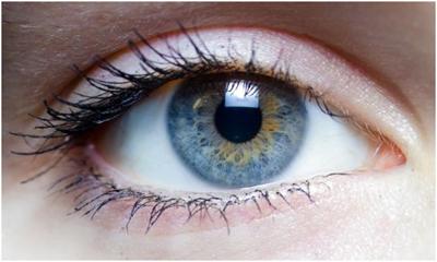 устройство EyeLock