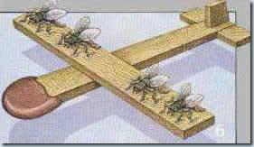 летательный аппарат будущего