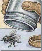 ловим мух в банку