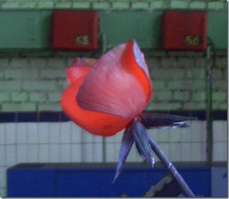 красная роза из металла - фотка