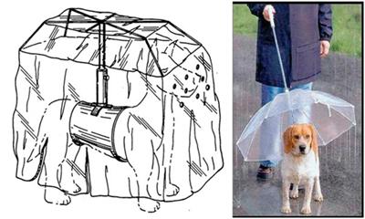 Как сделать так, чтобы собака не намокла под дождем