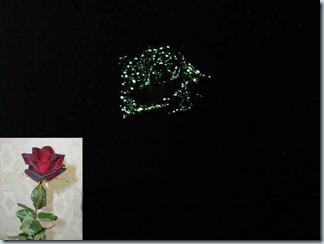 роза светящаяся в темноте